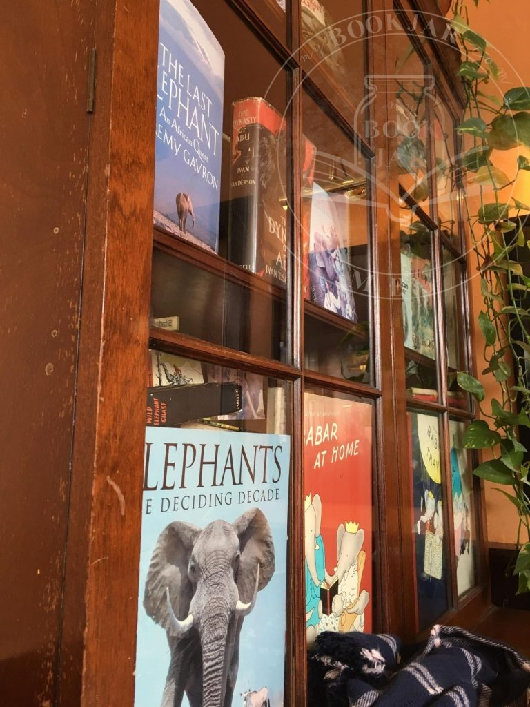The Elephant House bookcase